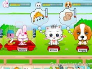 play My Cute Pets 2