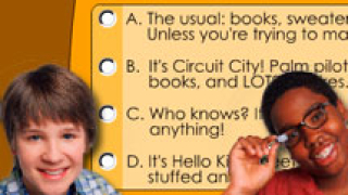 Ned'S Personality Quiz game