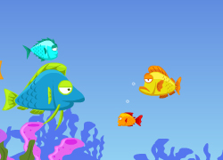 Fish Eat Fish Free Online Games