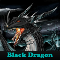 play Black Dragon 5 Differences