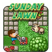 Sunday Lawn game