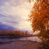 play Jigsaw: Autumn Sunset