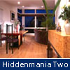 play Hiddenmania Two