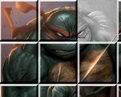 play Ninja Turtles Sliding