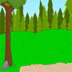 play Find Hq The Forest