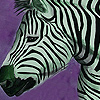 play Zebras In The Desert Puzzle