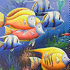 play Colorful Deep Sea Fishes Slide Puzzle