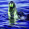 play Green Sea Lion Slide Puzzle