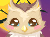play Owl Care