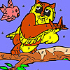 play Bird And Owl In The Woods Coloring