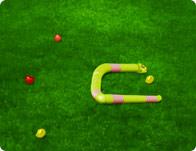 play Snake 3D