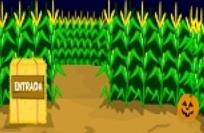 play Hooda Escape - Corn Maze