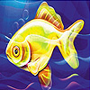 play Confused Sea Fish Slide Puzzle
