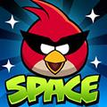 play Angry Birds Space Pc