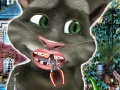 play Talking Tom Dentist
