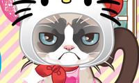 play Grumpy Kitty