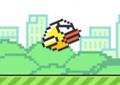 play Revenge Bird