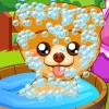 play Pet Stars Charming Boo