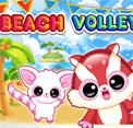 play Beach Volley Ball