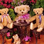 play Hidden Numbers-Teddy Bears