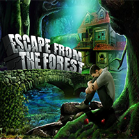 play Escape From Forest