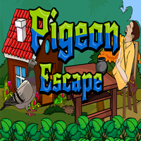 play Ena Pigeon Escape