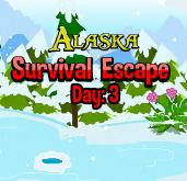 play Alaska Survival Escape Day 3