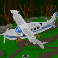 play Crashed Plane Escape