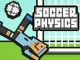 Soccer Physics game