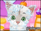 Cute Pet Salon game