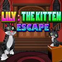 play Lily The Kitten Escape