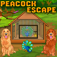 play Ena Peacock Escape