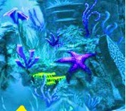 play Wow Lost Fish Escape 2