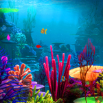 play Lost Fish Escape 2
