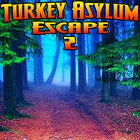 play Wowescape Turkey Asylum Escape-2