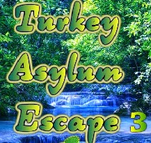 play Wow Turkey Asylum Escape 3