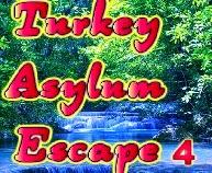 play Wow Turkey Asylum Escape 4