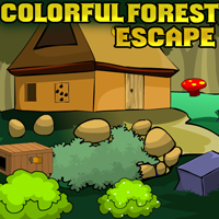 play Theescapegames Colorful Forest Escape
