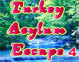 play Turkey Asylum Escape 4