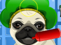 play My Pug Pet Care And Dress Up