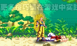 play Dragon Ball Fierce Fighting 2.5