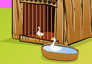 play Yoopygames Duck Escape