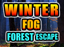play Gamesnovel Winter Fog Forest Escape