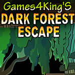play Games4King Dark Forest Escape