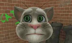 play Talking Tom Cat