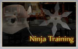 Ninja Training game