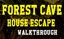 play Forest Cave House Escape Walkthrough