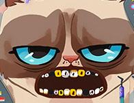 play Grumpy Cat Dental Care