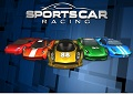 Sportscar Racing game