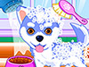 play Puppy And Kitty Salon